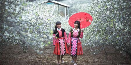 Du lịch Mai Châu - Mộc Châu mùa hoa mận trắng 2017 giá tốt từ Hà Nội