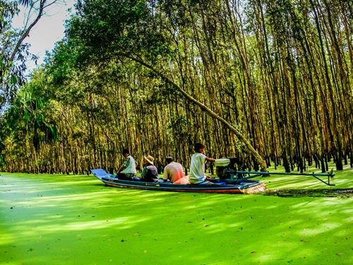 Cảm nhận khách hàng đi Tour Châu Đốc – Hà Tiên ngày 01/02/2014