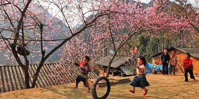 Du Lịch Sapa dịp tết Ất Mùi 2015 khởi hành từ Hà Nội