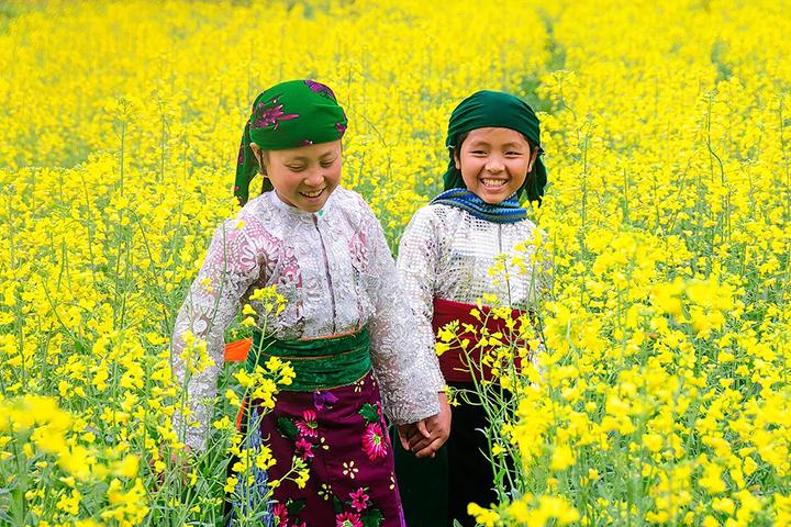 Xu Hướng Du Lịch Theo Mùa Hoa Nở