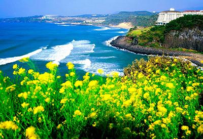 Bạn có hẹn với mùa hè Hàn Quốc
