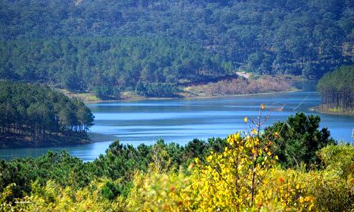 diem du lich ho tuyen lam du lich viet Khám phá hồ Tuyền Lâm thơ mộng   trữ tình