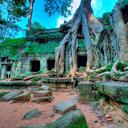 Phản hồi khách hàng sau khi đi Tour Campuchia ngày 30/04/2014