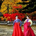 Tuần lễ du lịch Hàn Quốc