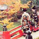 Kyoto – Thiên đường mùa thu Nhật Bản