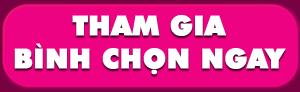 binh-chon-giai-thuong-website-thuong-mai-dien-tu-tieu-bieu-2015_du-lich-viet