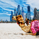 Điều gì tạo nên sức cuốn hút của Dubai?