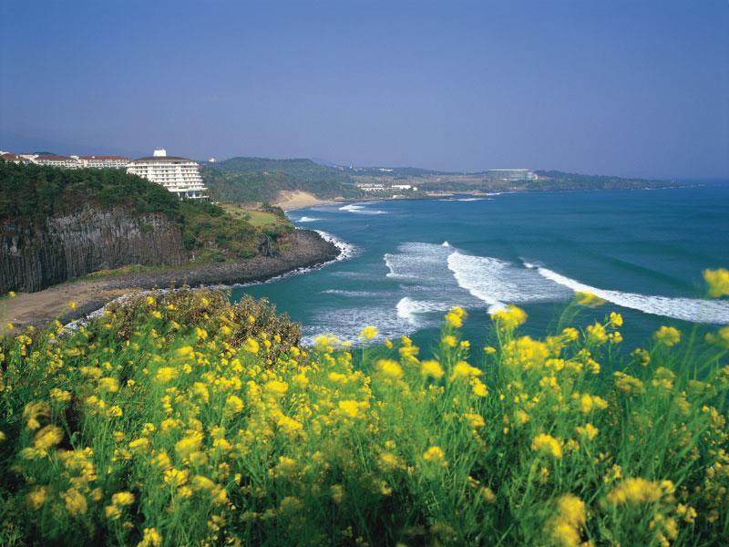 Du lịch Hàn Quốc ghé thăm đảo Jeju