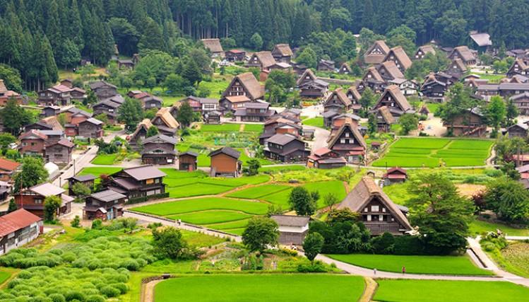 Ngôi làng cổ Shirakawa – go là điểm du lịch nổi tiếng ở Nhật Bản