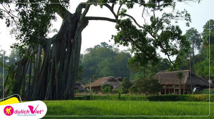 Du lịch Tuyên Quang - Đền Cấm - Lán Nà Lừa - Cây Đa Tân Trào từ Hà Nội 2020