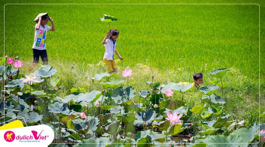 Du lịch Đồng Tháp - Làng hoa Sa Đéc - Tràm chim Tam Nông - Đồng sen tháp mười từ Sài Gòn