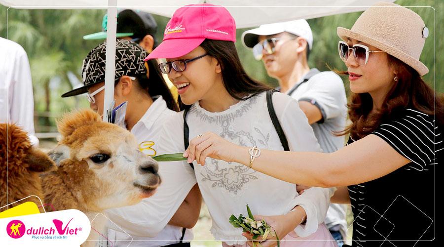 Du lịch Quy Nhơn - Bình Định 3 ngày 2 đêm khởi hành từ Sài Gòn 2020