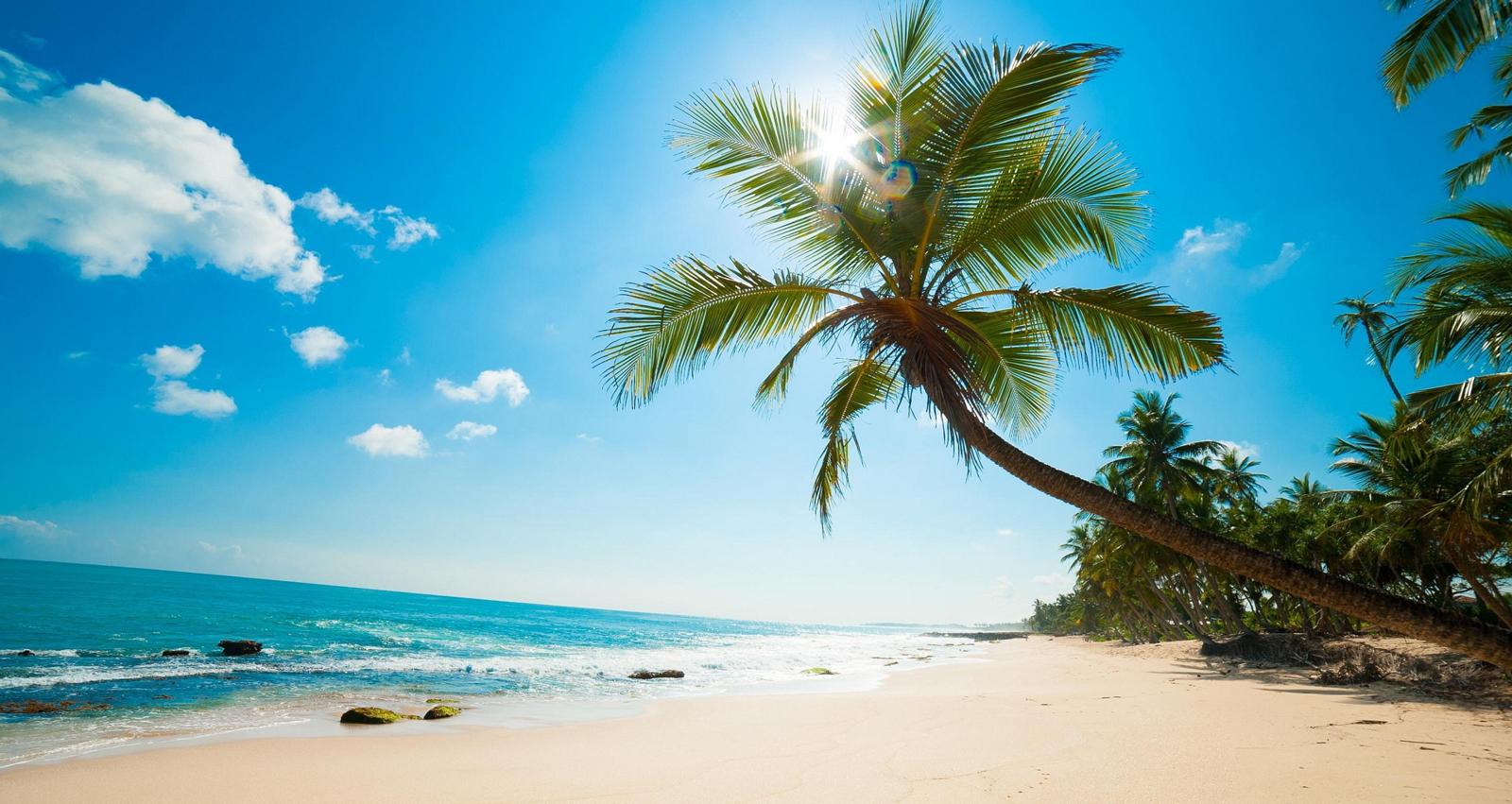 Du lịch Phú Quốc - Bãi sao mang vẻ đẹp dịu dàng