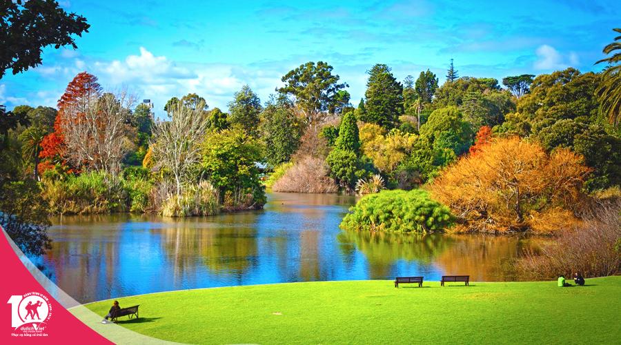 Du lịch mùa thu nước Úc Sydney - Vịnh Jervis - Ngắm cá heo - Melbourne - Ballarat từ Sài Gòn