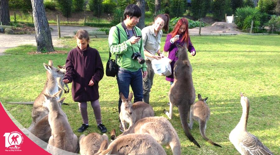 Du lịch nước Úc Melbourne - Sydney khởi hành từ Sài Gòn giá tốt 2019