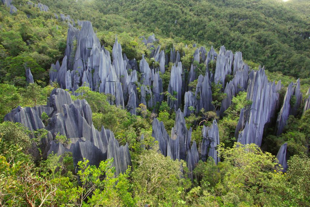 Du lịch Malaysia tới Gunung Mulu