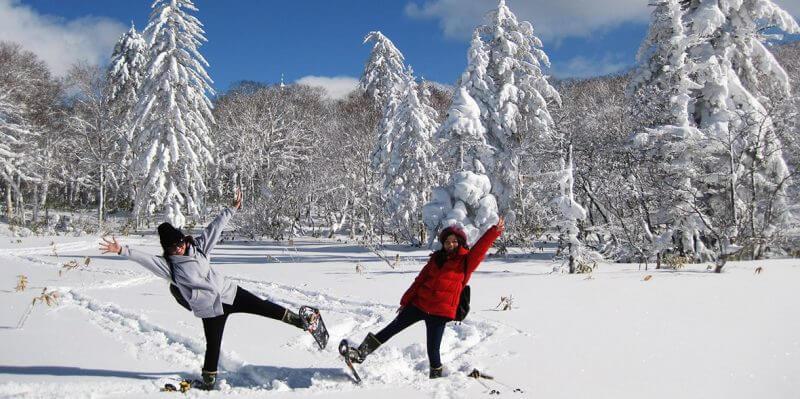 Du lịch Nhật Bản mùa Đông khám phá Hokkaido