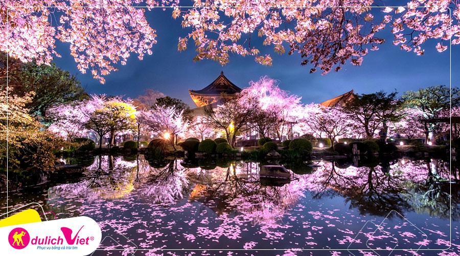 Du lịch Nhật Bản mùa hoa Anh Đào 2020 từ Sài Gòn giá tốt
