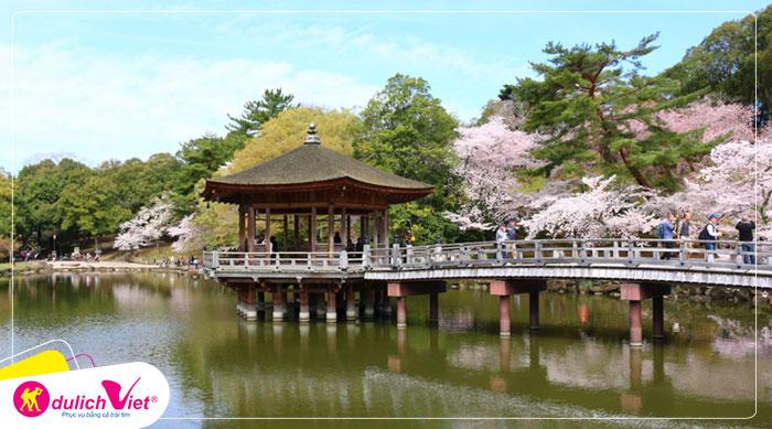 Du lịch Nhật Bản mùa hoa Anh Đào Nagaya - Osaka - Fuji - Tokyo từ Hà Nội giá tốt 2020