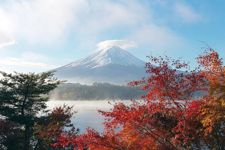 Du Lịch Nhật Bản mình đi đâu bây giờ?