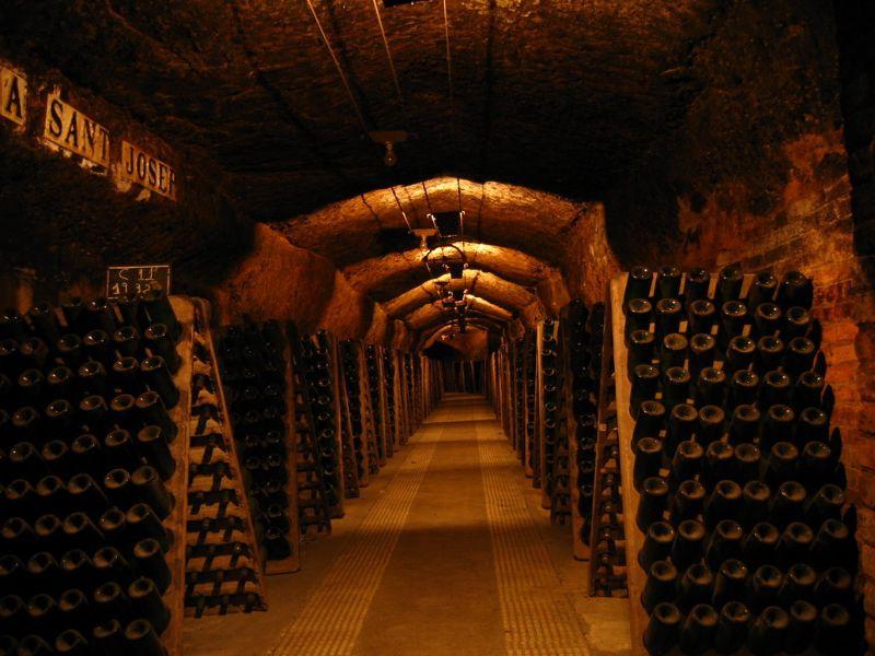 Du lịch Luxembourg tham quan hầm rượu vang cổ Saint Martin