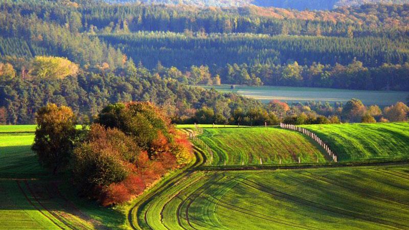 Kellerwald-Edersee mang một vẻ đẹp mỹ miều lãng mạn khi thu về