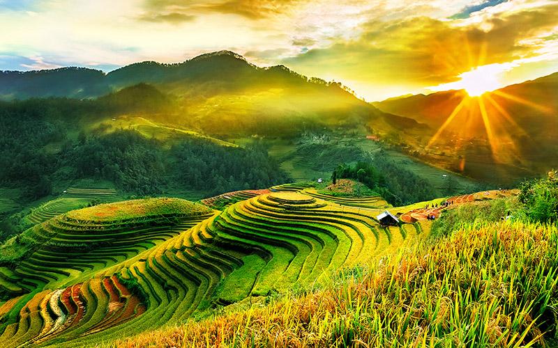 vẻ đẹp ruộng bậc thang Yên Bái - Mù Cang Chải