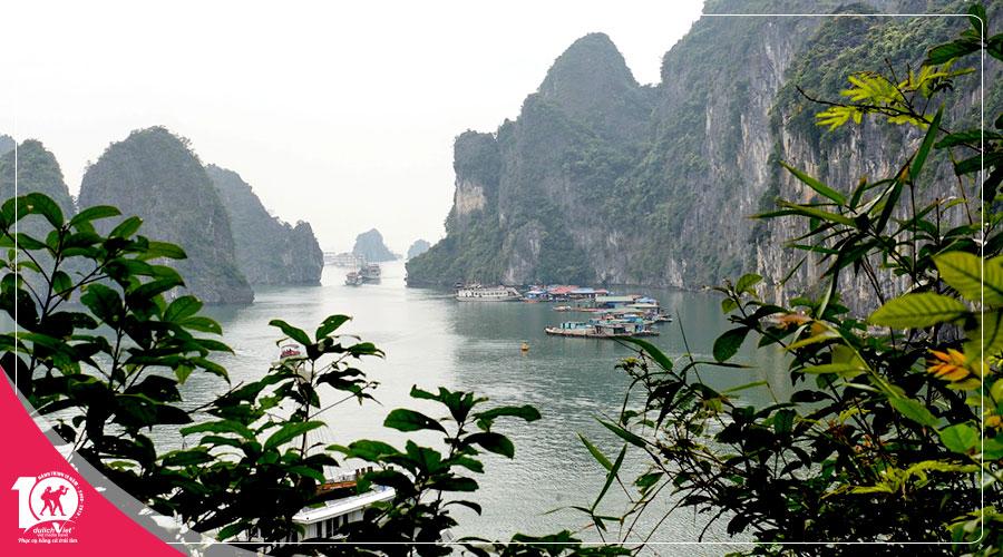 Du Lịch Miền Bắc, Tour Hà Nội - Hạ Long - Sapa 4 ngày khám phá mùa hoa Đào