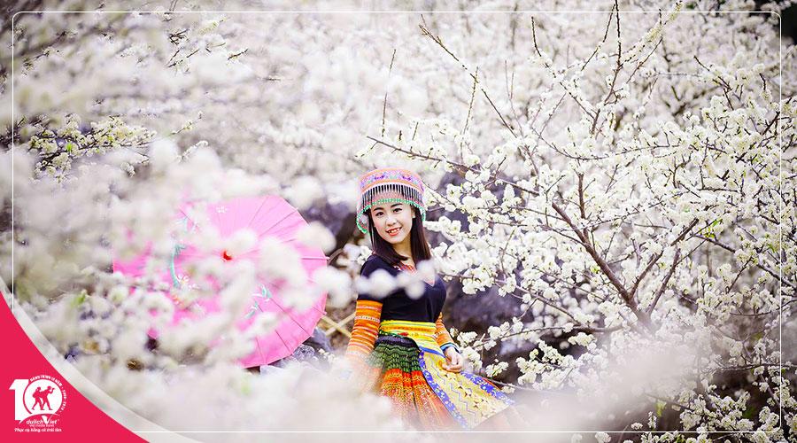 Du Lịch Miền Bắc - du lịch Tây Bắc - Tour Mộc Châu - Sapa 6 ngày Ngắm Hoa Mơ Hoa Mận Nở Trắng Đồi