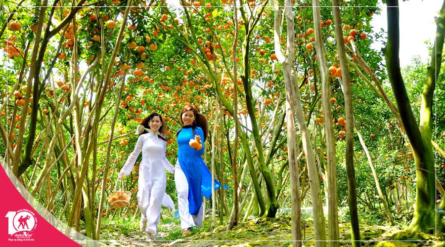 Du Lịch Đồng Tháp – Làng Hoa Sa Đéc – Vườn Quýt Hồng Lai Vung 2 ngày đi từ Sài Gòn