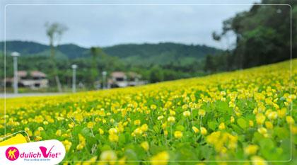 Tour Du lịch Quy Nhơn - Phú Yên 4 ngày 3 đêm giá tốt khởi hành từ Hà Nội