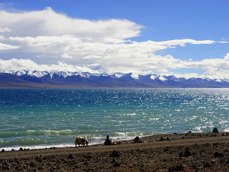 Du lịch Tây Tạng để được thấy một hơi thở mới của thế giới