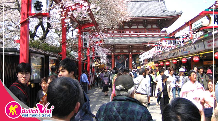 Mùa xuân này, bạn có đến Nhật không?