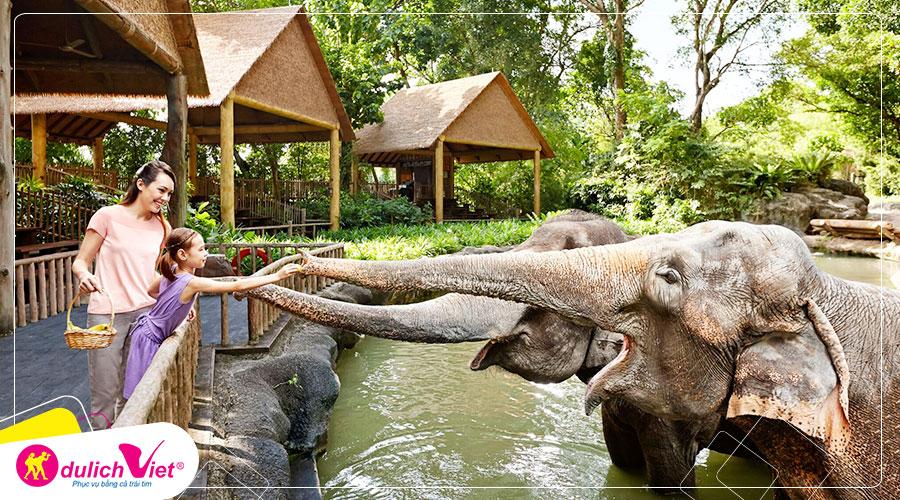 Free and Easy - Combo Singapore Zoo và River Safari + xe đưa đón 2 chiều