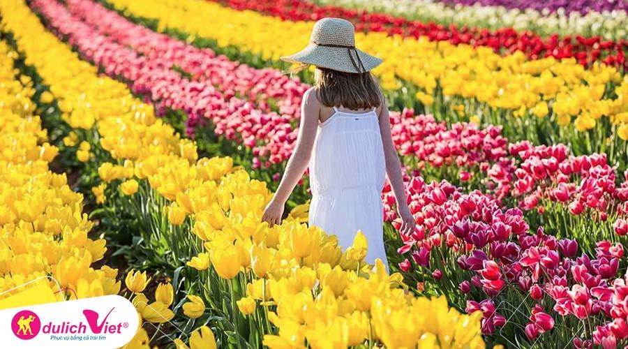 Chương trình du lịch mùa xuân Úc Melbourne - Lễ hội hoa tulip khởi hành từ Sài Gòn 2019