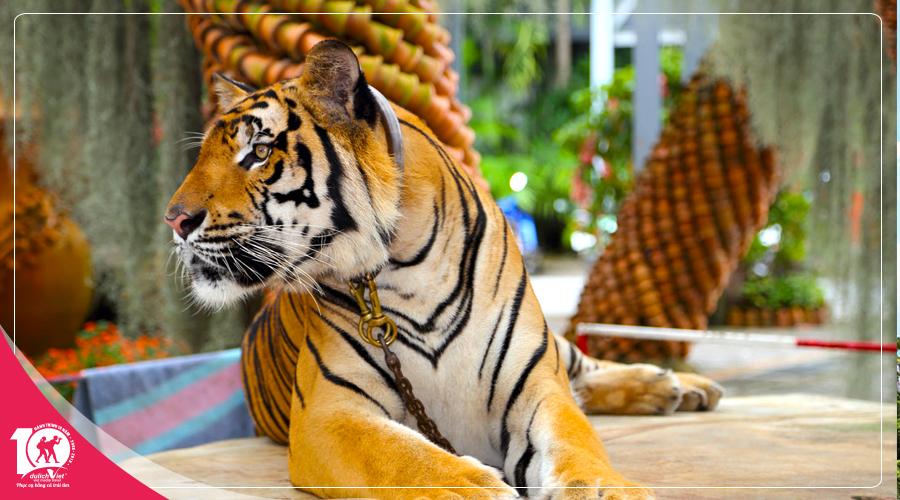 Du lịch Thái Lan Bangkok - Pattaya mùa Thu khởi hành từ Sài Gòn giá tốt
