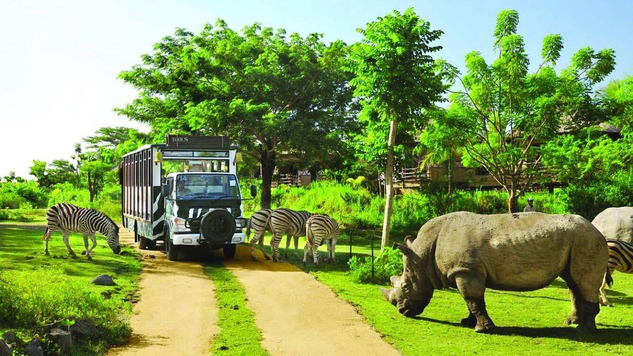 Du lịch Phú Quốc - Công viên Vinpearl Safari Phú Quốc