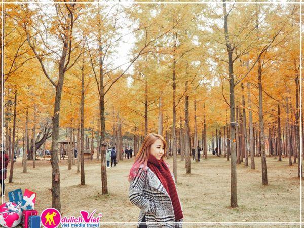 Tích cho mình những kinh nghiệm du lịch Hàn Quốc mùa thu