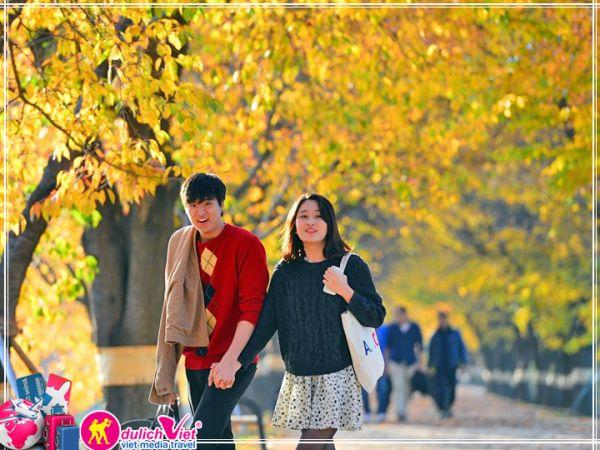 Những địa điểm nào nên đến tại Hàn Quốc vào mùa thu