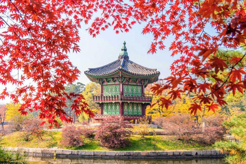 Công viên Namsan một trong những điểm nên đến trong du lịch mùa thu Hàn Quốc