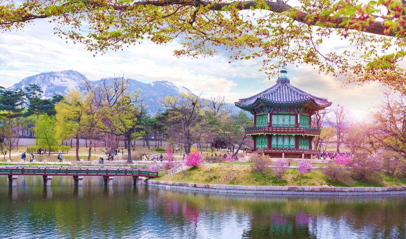 Chúc du khách có hành trình xin visa Hàn Quốc thành công!