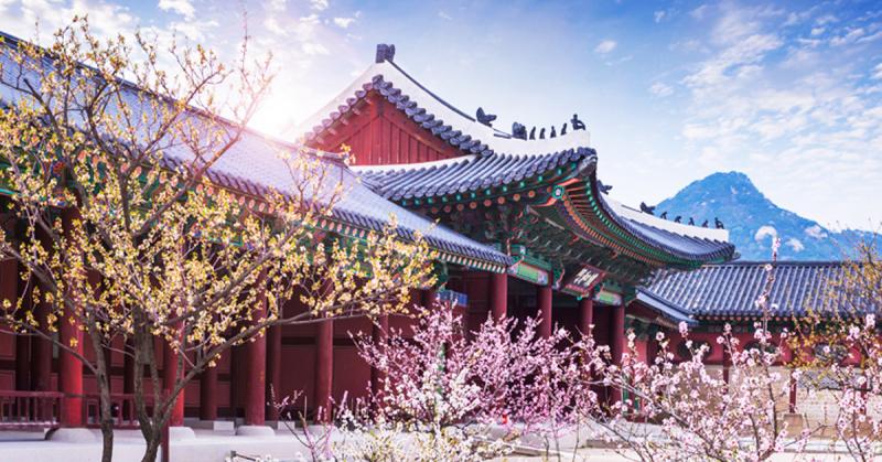 Du lịch Hàn Quốc tự túc luôn là tour du lịch cá nhân nhiều du khách yêu thích