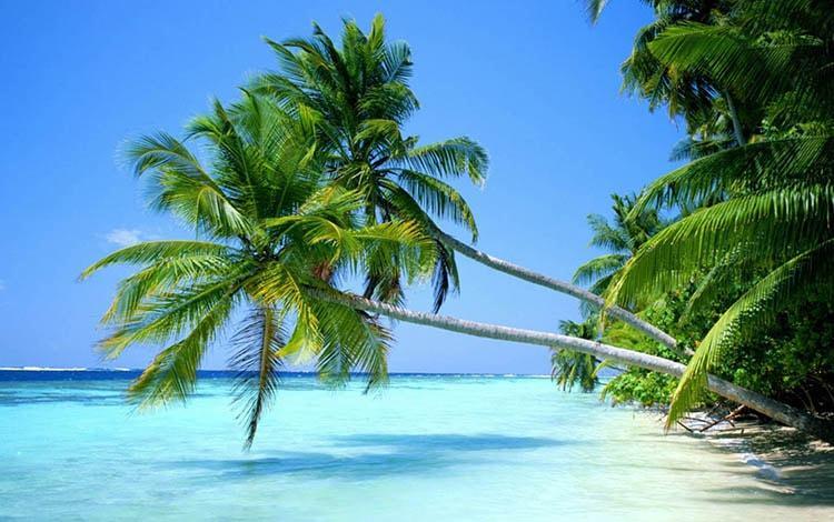 Khám phá những bãi biển với bờ cát trắng dài khi đến du lịch mùa thu Phú Quốc