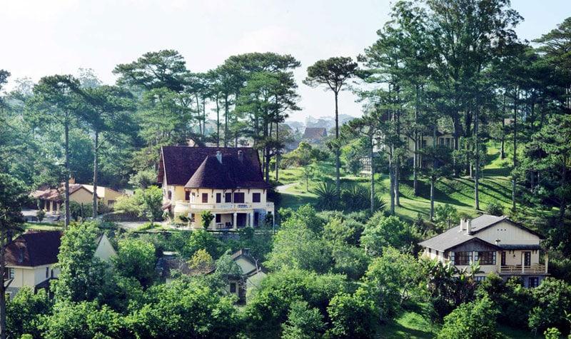 những ngôi biệt thự dưới rừng thông