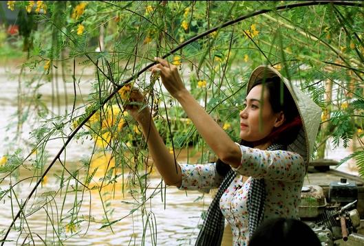 bông điên điển mùa nước nổi An Giang