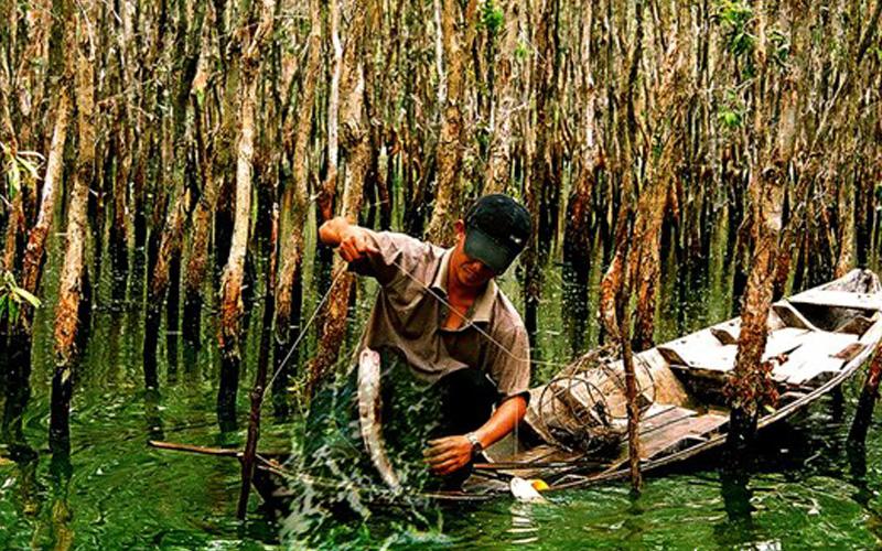 Trải nghiệm đi câu cá ngoài tự nhiên cùng người dân bản địa