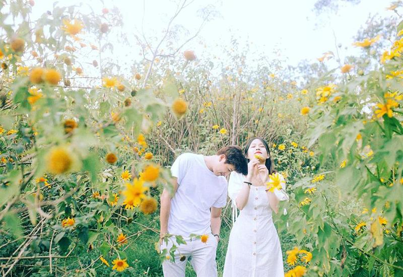 Cung đường ngắm hoa dã quỳ Đà Lạt ở Tà Nung - Thác Voi
