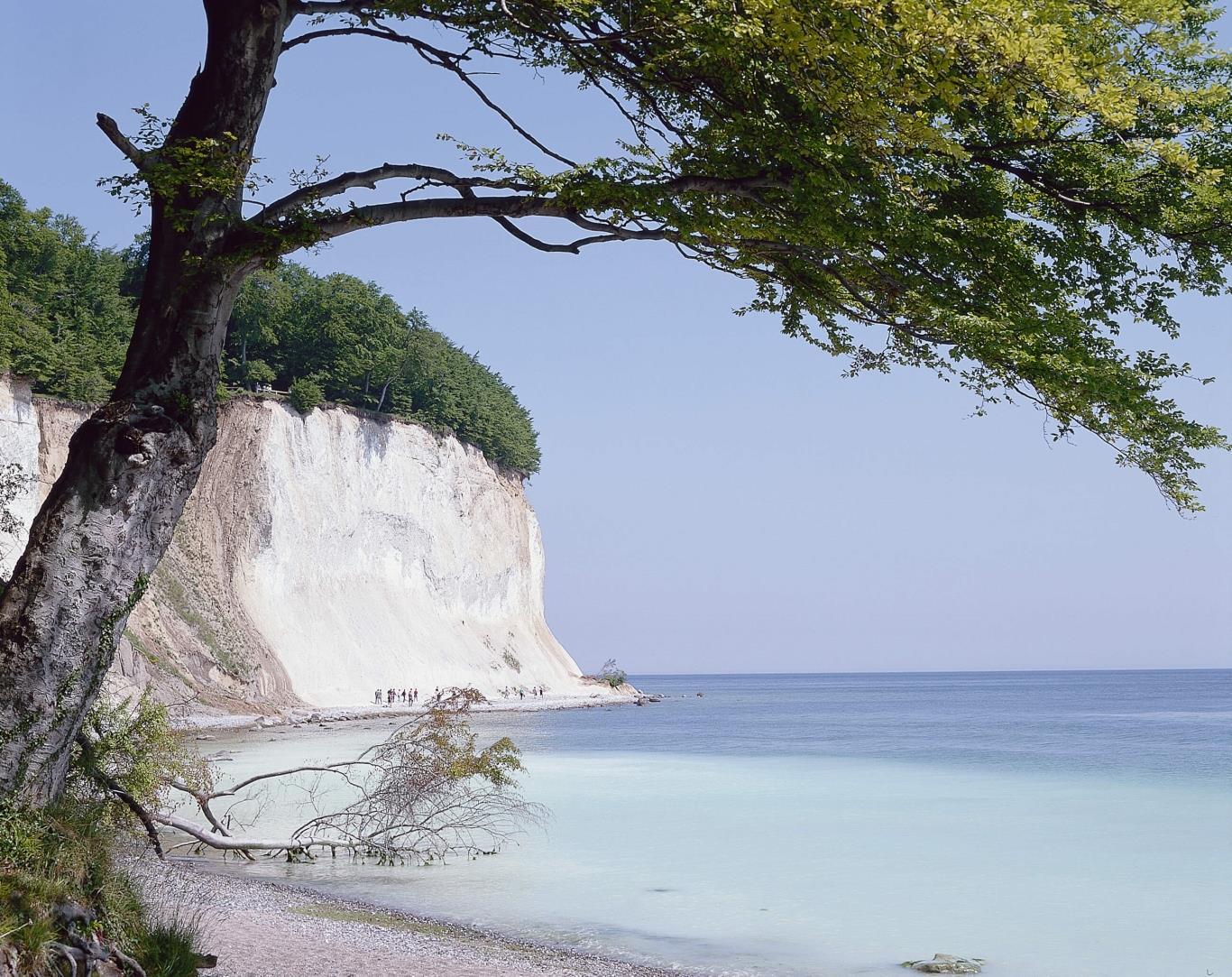Đảo Rugen Island là hòn đảo nổi tiếng với vẻ đẹp hoang sơ, yên bình