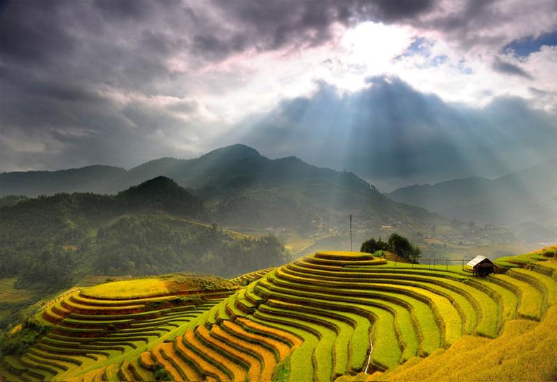 Ruộng bậc thang Yên Bái - Đèo Khau Phạ