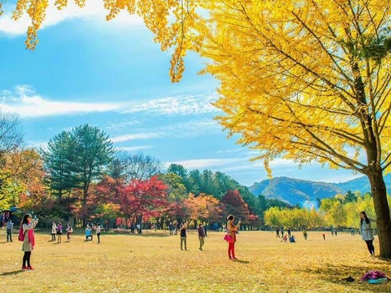 Thủ đô Seoul làthiêng dường du lịch Hàn Quốc khi mùa Thu về